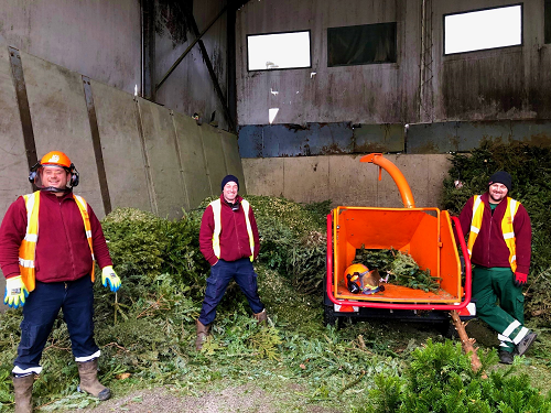 Christmas tree recycling 2021